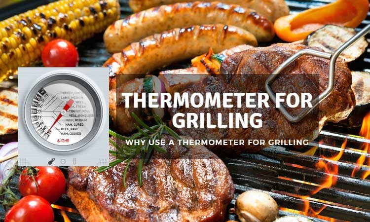 Best Thermometer for Grilling